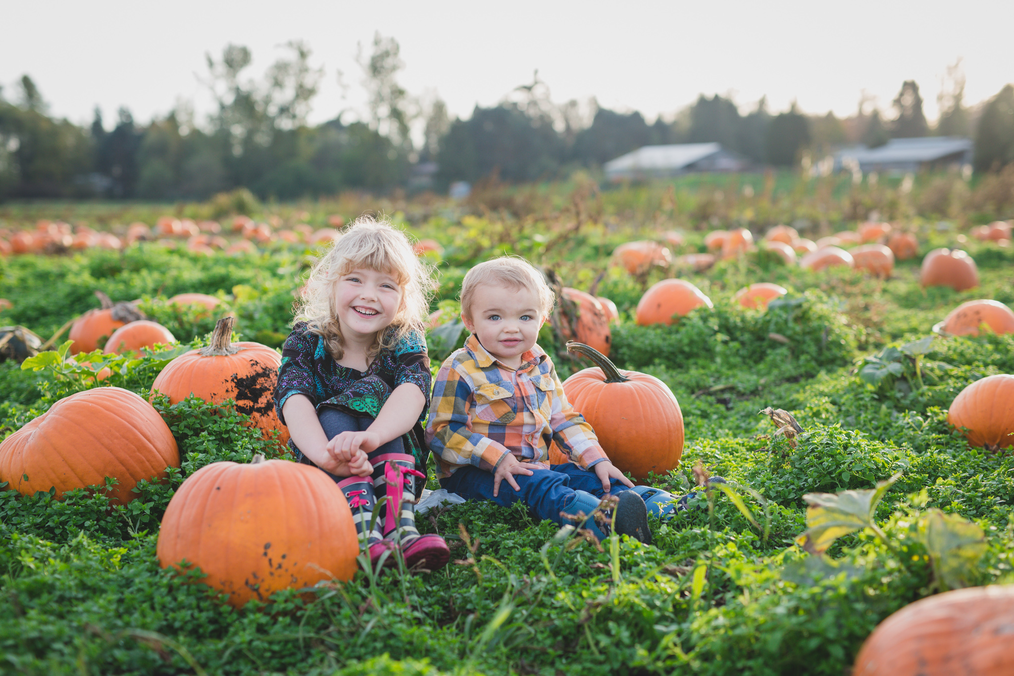 pumpkin patch, family photos, rondriso farms, fall photos, family photographer, vancouver, wink photography, brother sister, pumpkin patch photography, fraser valley photographer