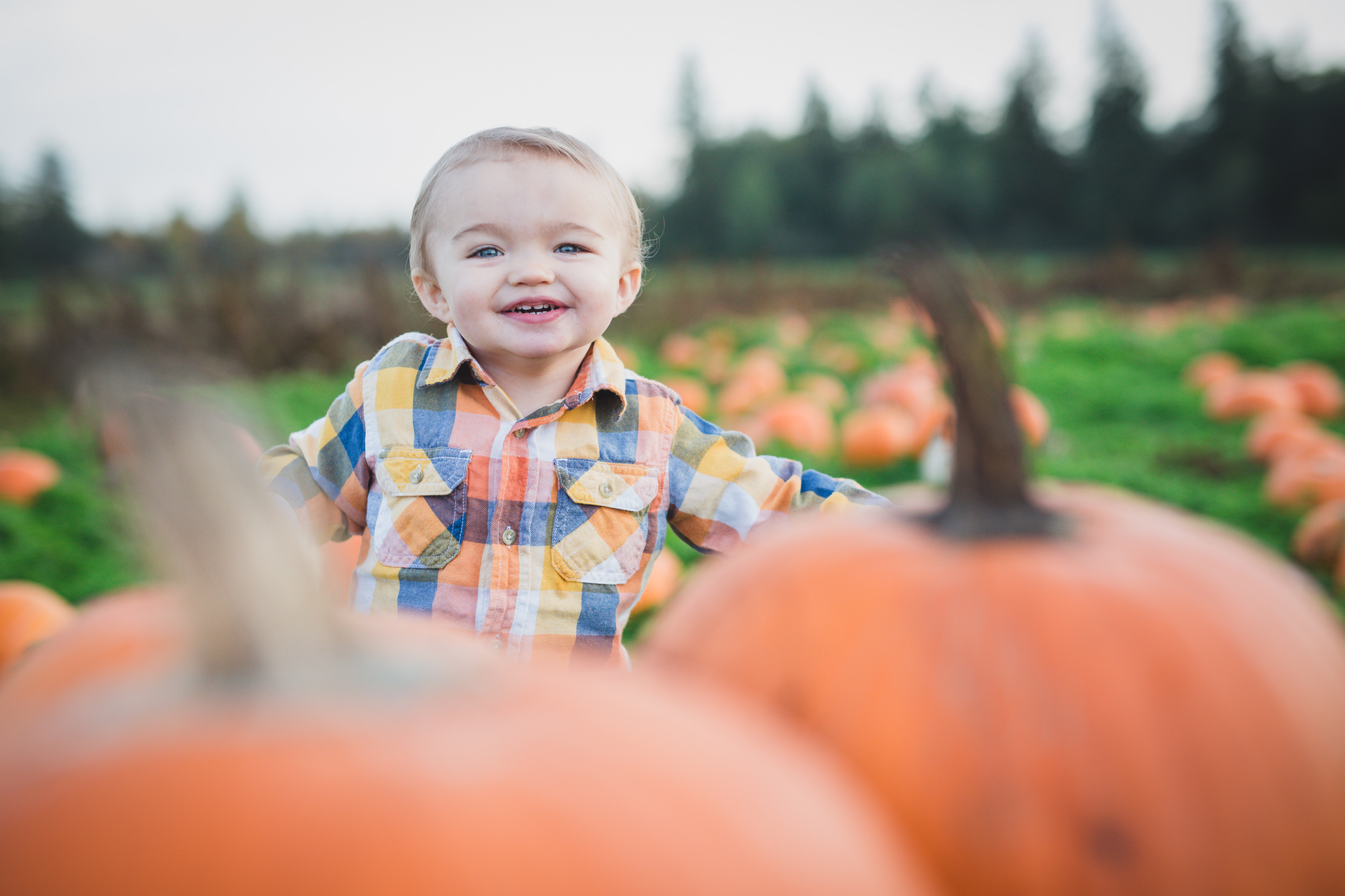 family photographer fraser valley, family photographer cloverdale, pumpkin patch photos, pumpkin patch family photos, rondriso farms pumpkin patch, baby photography