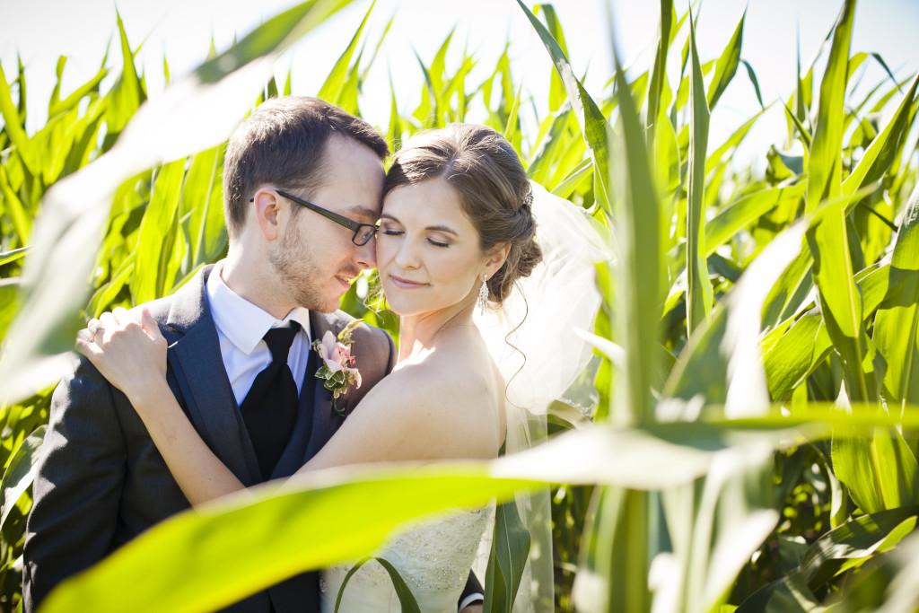 corn field wedding photo, bride and groom portrait at saar bank farms wedding