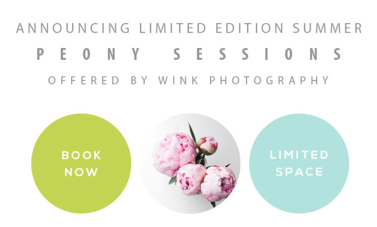 fraser valley photographer, mini sessions 2017 at a langley bc peony farm