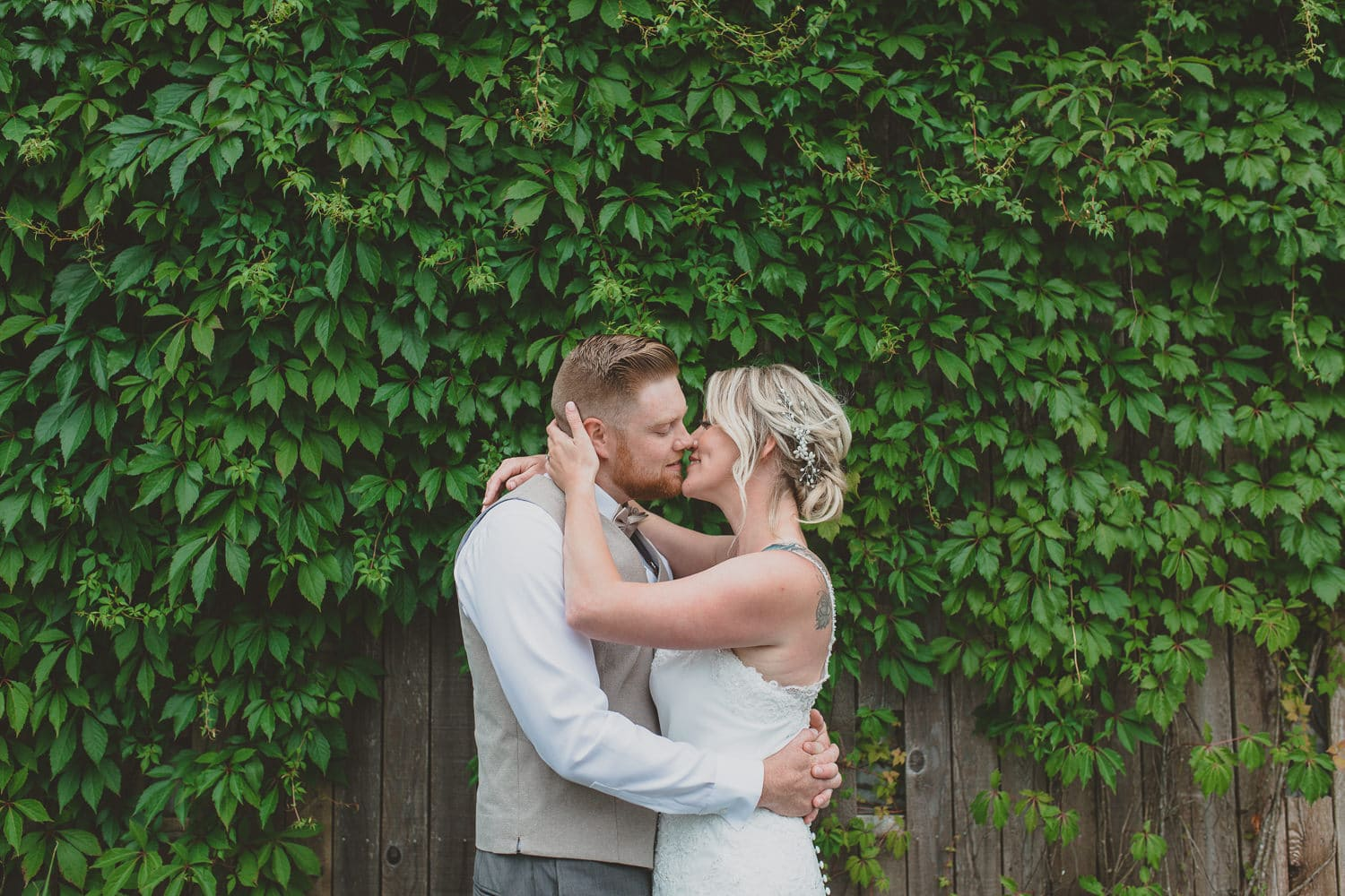 wedding couple portrait with ivy wall in osprey village